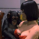 KatyPerry-chimpance-5